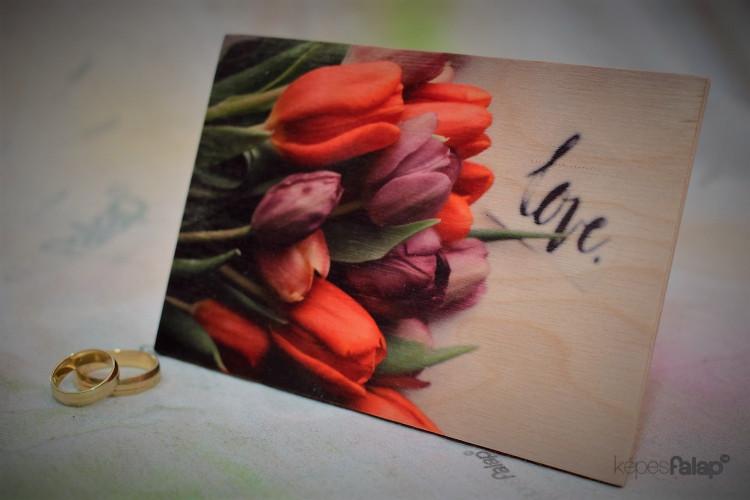 Szerelem képesFalap - Tulipán
